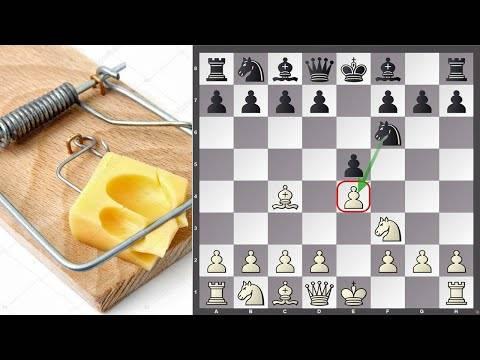 Шахматные дебюты