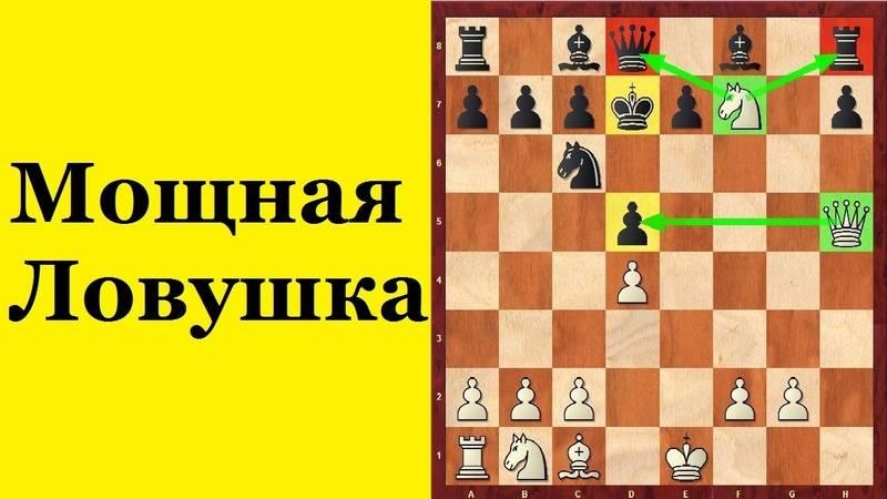 Защита двух коней в шахматах: ловушки за белых, черных (яр саныч)
