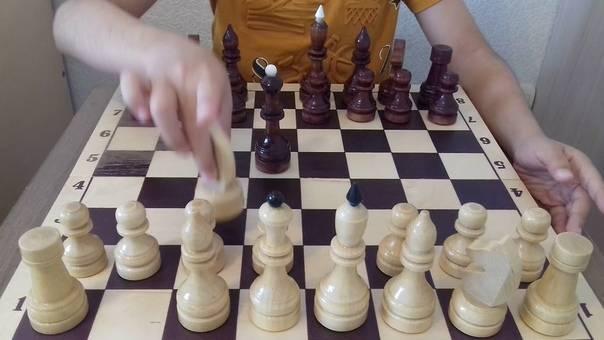 Дебюты в шахматах для начинающих :: syl.ru